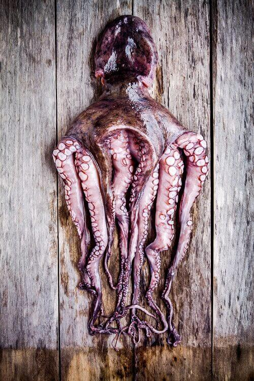 Grilled Mediterranean Octopus Recipe