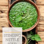 bowl of wild stinging nettle soup