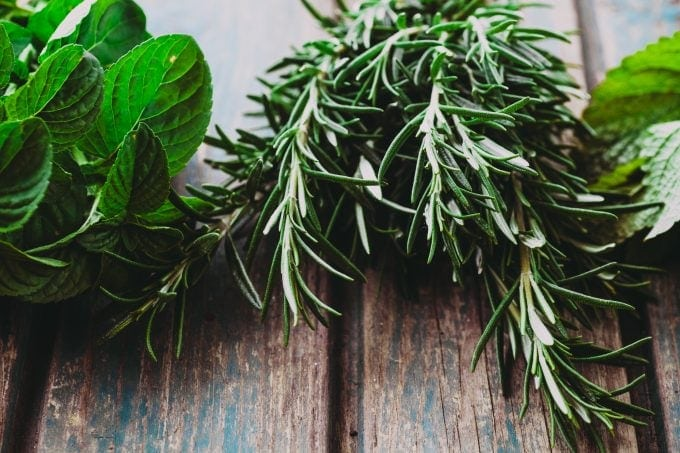 fresh rosemary and mint herbs