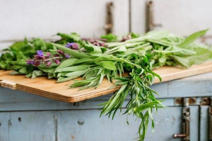 kitchen table full of fresh herbs