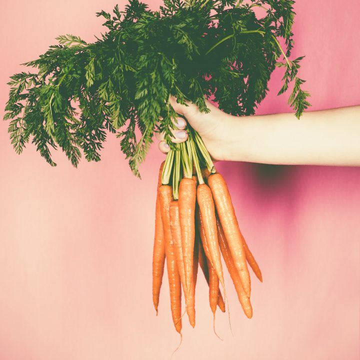 hands holding a bunch of carrots