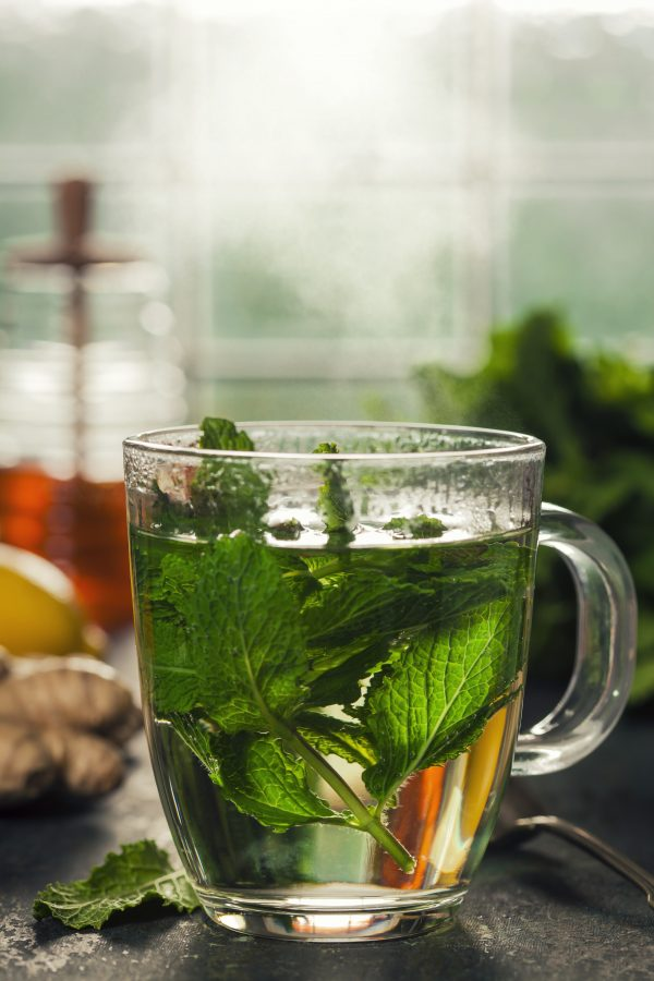 cup of fresh mint tea