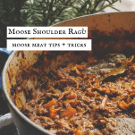 pot of moose ragu or sauce or stew