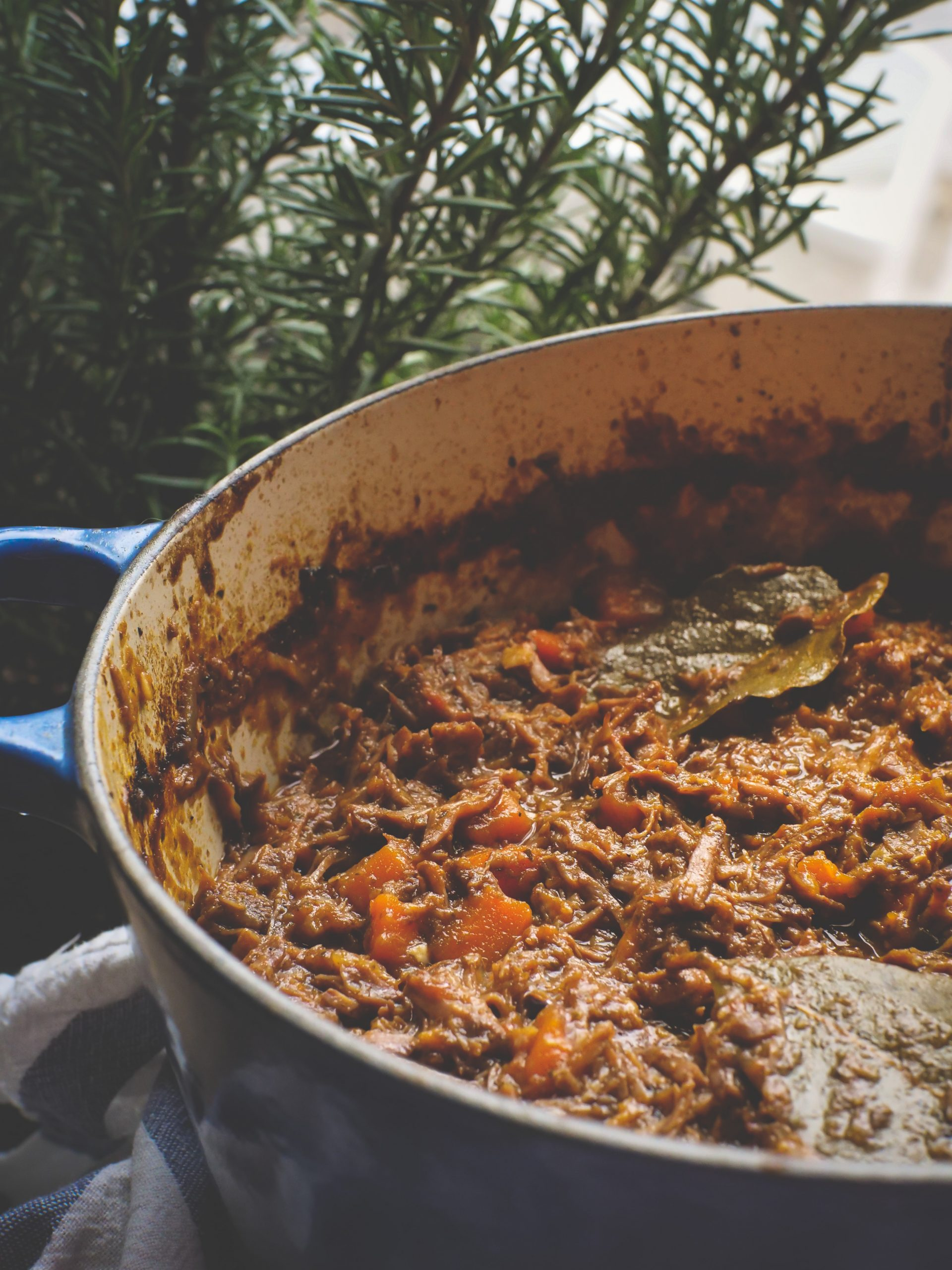 pot of moose shoulder ragu